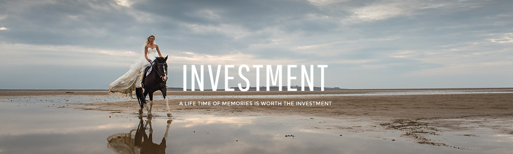 page header-investment